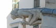 Der unbekannte Stephansdom